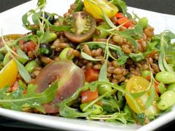 Arugula and Wheat Berry Salad