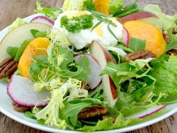 Persimmon And Burata Salad