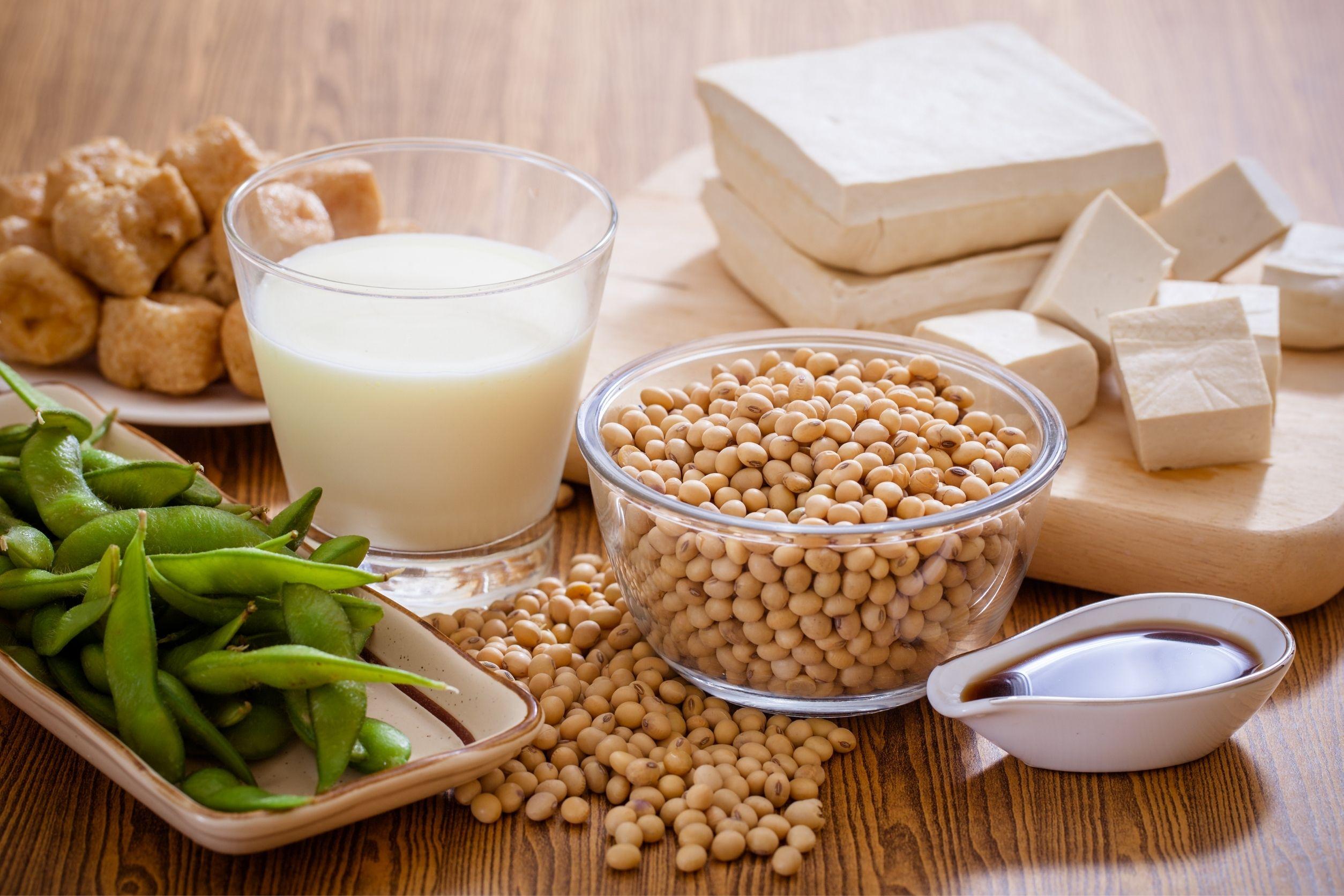 vegetarian foods made of soy